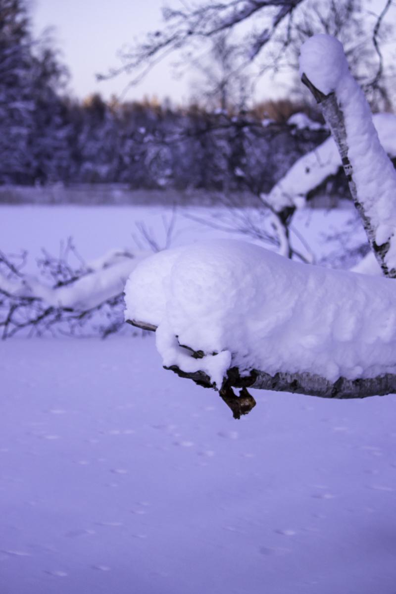 Talvi Suomi